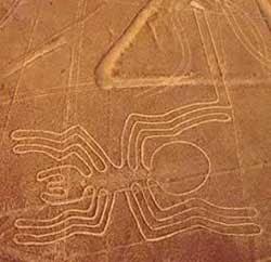 Araña en la línea de Nazca