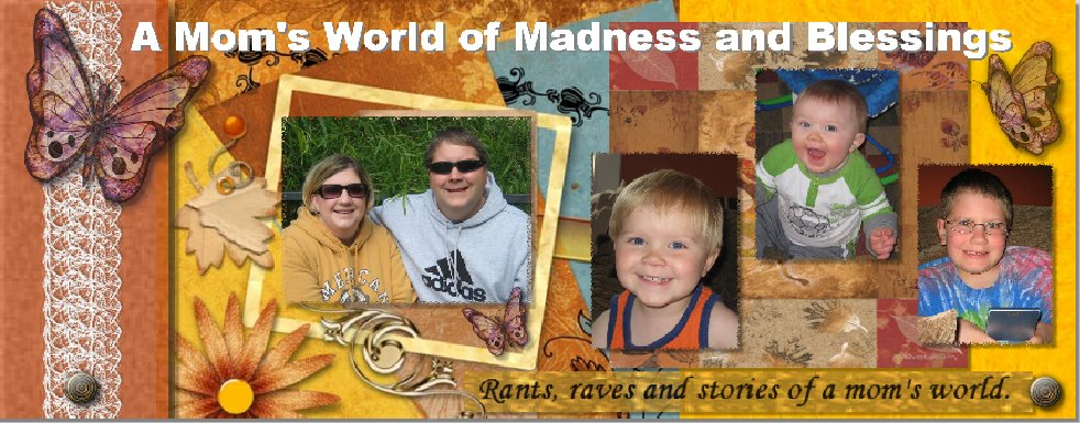 A Mom's World of Madness and Blessings