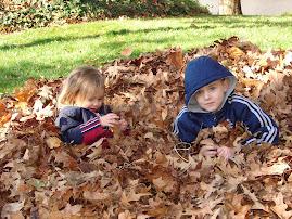 Leaf Day