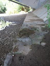 Pamplona Mano de garduña bajo el puente metálico aguas arriba del puente de la Magdalena