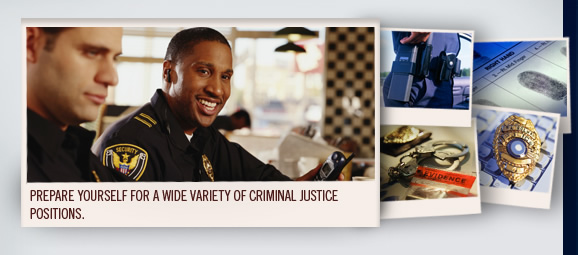 interview a criminal justice professional For me, it starts in the classroom so that the next generation of criminal justice  professionals can tackle this growing international crime.