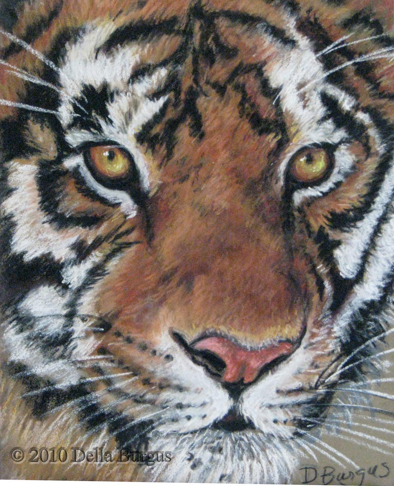 http://4.bp.blogspot.com/_gu29c8DbubA/TBaAeB8nT0I/AAAAAAAAAtA/sqb3zOPYKZU/s1600/tiger%2Beyes.jpg