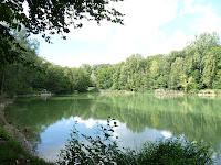 カルネルの森のプチ・エタンpetit étang