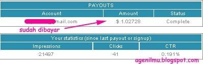 Bukti Pembayaran dari Promoteburner.com