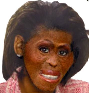What's good for the goose is good for the gander Michelle-obama-ape
