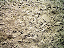 the footprints.....