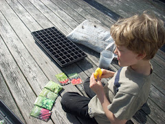 Planting Seeds for our Traveling Garden