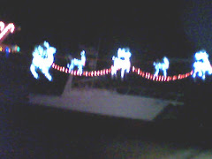 Snug Harbor Light Show- 2009