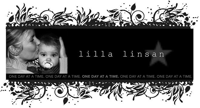 Lilla Linsan