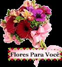 Flores p/ Você