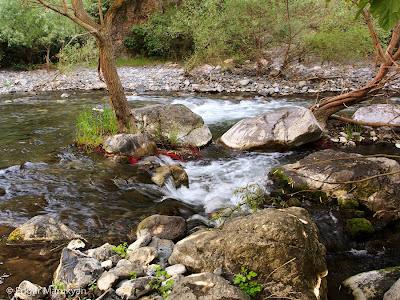 Որոտան Գետի նկար