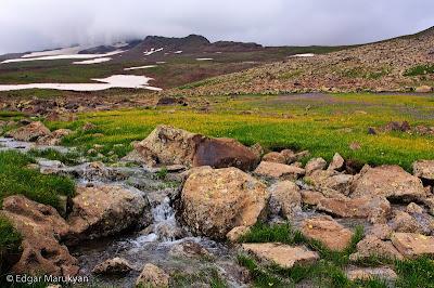 Արագած լեռան լանջերին