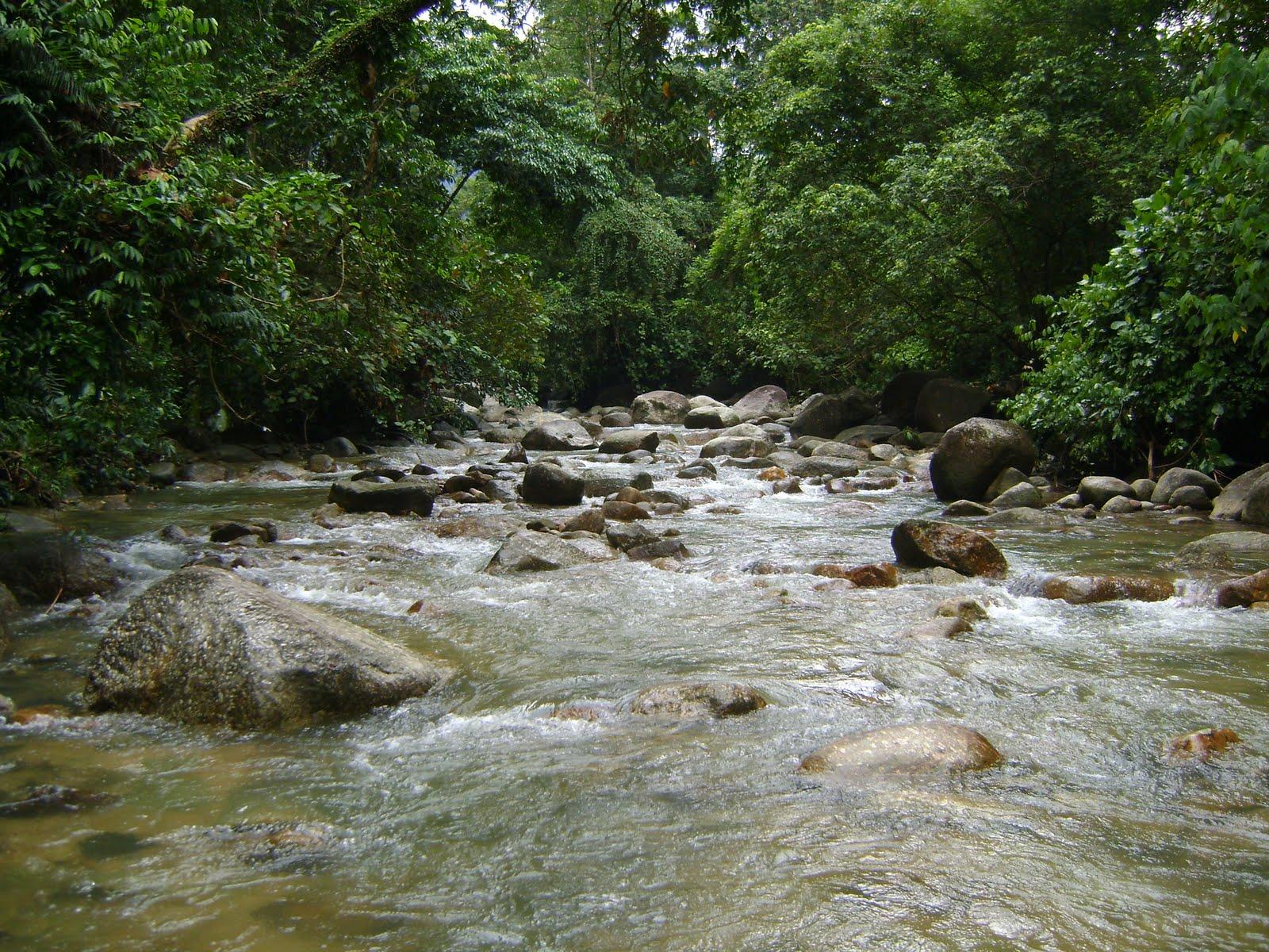 Kos memulih sungai adalah mahal kos bagi tujuan pemulihan sungai