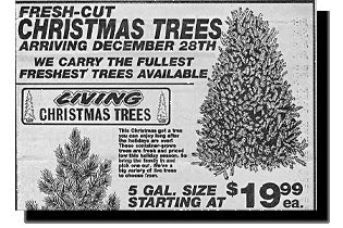 funny ads stupid news christmas trees arriving december 28 too late photo