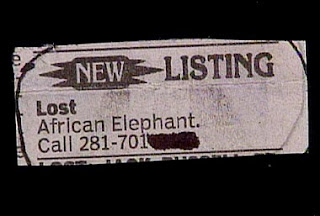 really funny lost and found ad for african elephant very strange