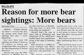 really stupid headline for study on more bear sighting due to more bears funny