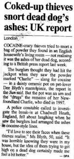 funny newspaper headline about coke head thieves sniffing dead dog ashes