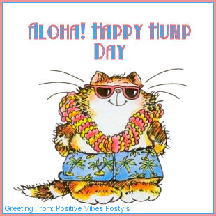 Happy Humpity Hump Day!