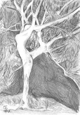Musique thomas mann les dossiers l 39 arbre danse dessin et po me - Arbre qui pousse vite et fait de l ombre ...