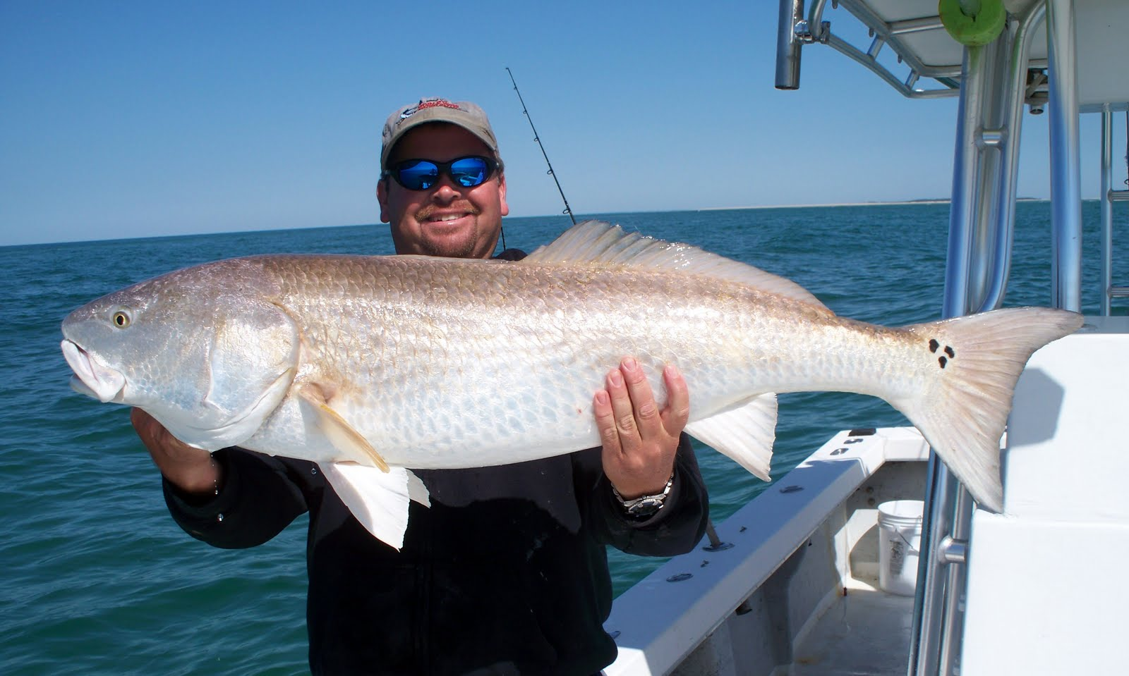 Top water charters fishing reports and news beaufort for Red drum fishing rigs