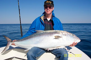 Citation Amberjack