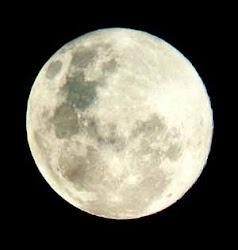 Sin la luna no podría vivir.