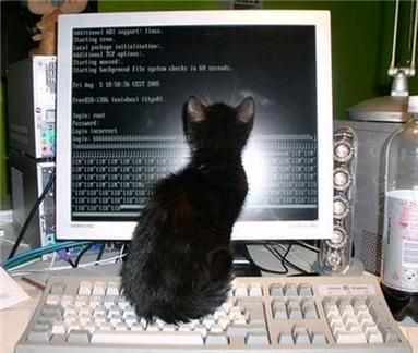Satellite Internet Hack