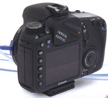Denz/Canon 7D evo PL54 back