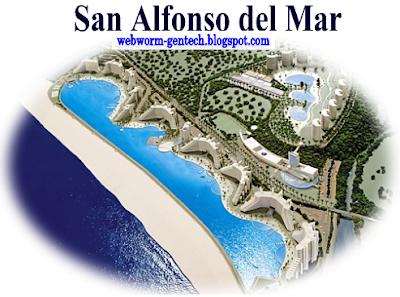 Webworm gentech san alfonso del mar largest outdoor for Biggest outdoor pool