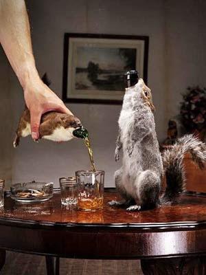Cerveja servida em animais empalhados