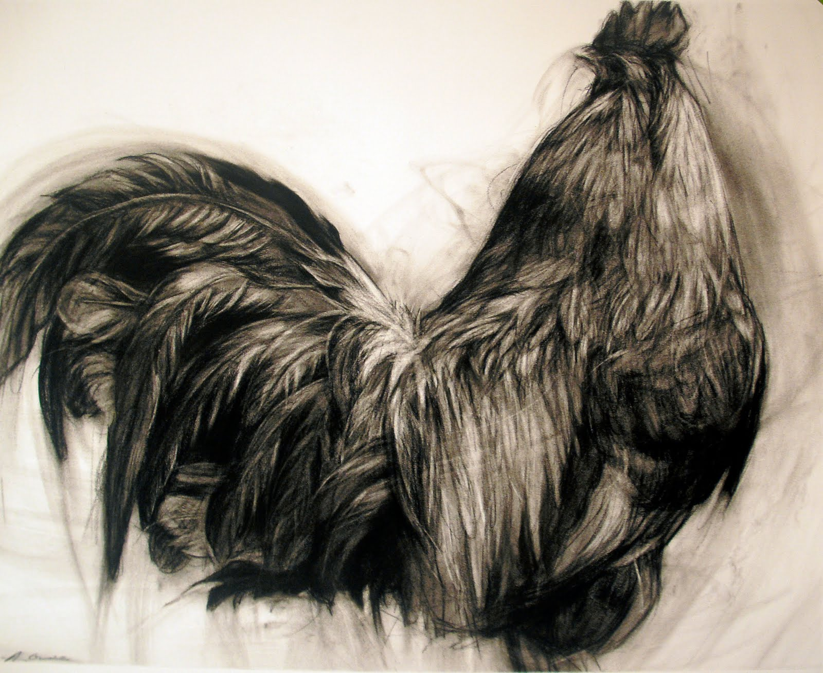 Charcoal Rooster By April Coppini Pictures Pinterest