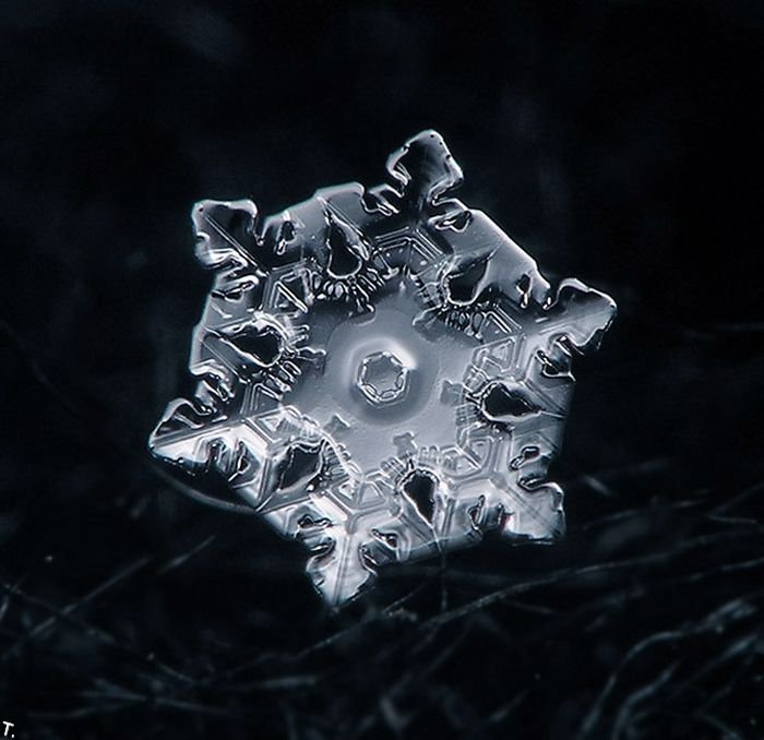 50 awesome pictures of snowflake