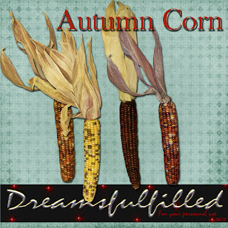 http://feedproxy.google.com/~r/Dreamsfulfilled/~3/exaJ4ME_iHs/autumn-corn.html