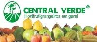Central Verde