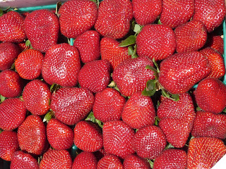 strawberries; Santa Monica farmers market