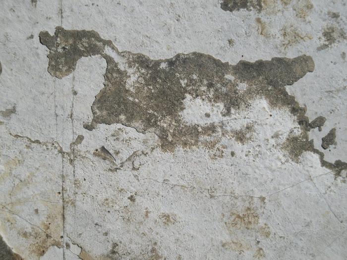 Κυνηγι [ σε πετρα ] Αστακος