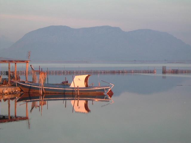 Λιμνοθαλασσα Μεσολογγιου 8 [ σειρα ]