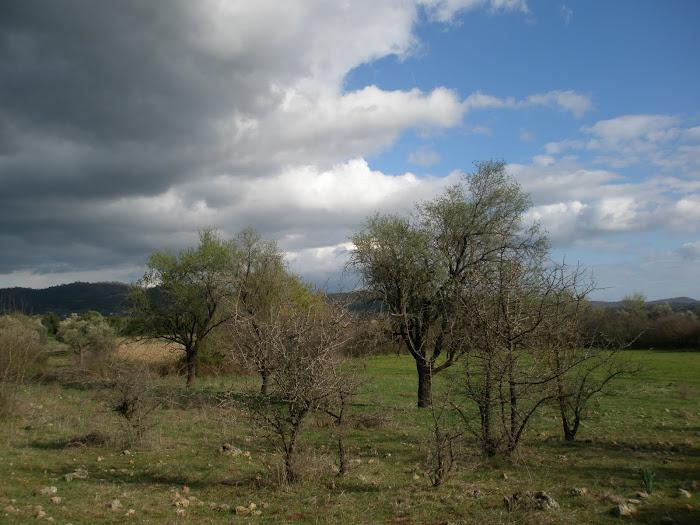 Τοπια του Ξηρομερου [ στα αμπελια ] Μαχαιρα Ακαρνανιας