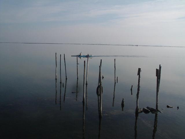 Λιμνοθαλασσα Μεσολογγιου [ σειρα ]