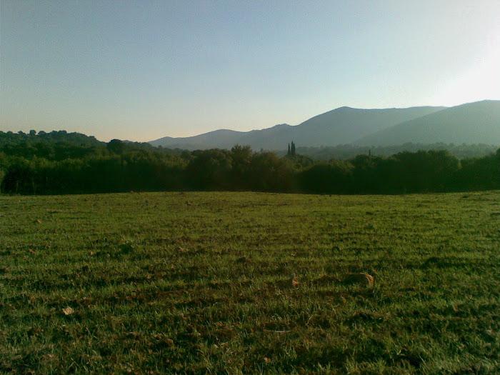 σπαρμενο χωραφι [ οκτωβριος ] [ στη Μπετση , Μαχαιρα Ακαρνανιας ]