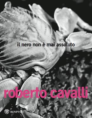 Un libro per festeggiare i 40 anni della maison Roberto Cavalli