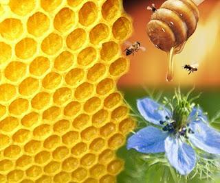 madu, gambar madu, manfaat madu