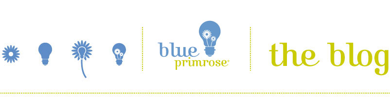 Blue Primrose
