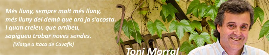 Toni Morral