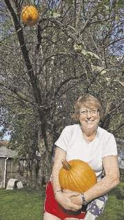 A pumpkin grows in a backyard tree