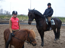 2 van onze eigen paardjes