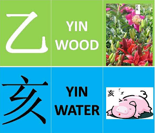 yin wood yin water month 乙亥