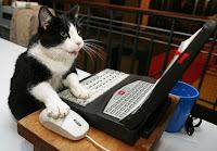 كمبيوتر يحاكي عقل القطة