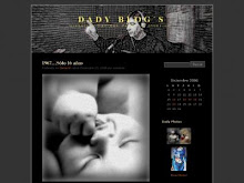 Dady Blog´s en Wordpress (08)