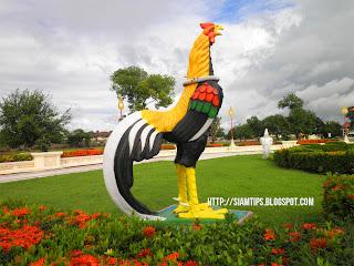 สถานที่ท่องเที่ยว สถานที่ท่องเที่ยวพระราชวังจันทน์ ไก่ชนพันธุ์เหลืองหางขาว